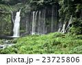 白糸の滝 滝 世界遺産の写真 23725806
