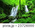 藤沢渓流 渓流 夏の写真 23726000