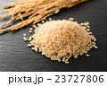 玄米 米 穀物の写真 23727806