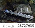 若狭神宮寺 閼伽井 お水送り 23727935