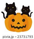 ハロウィン ジャック・オー・ランタン 猫のイラスト 23731793
