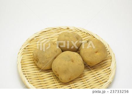 野菜 じゃがいもの写真素材 [23733256] - PIXTA