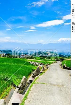 初夏の農村風景 (127) 23738334