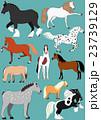 いろいろな種類の馬 23739129