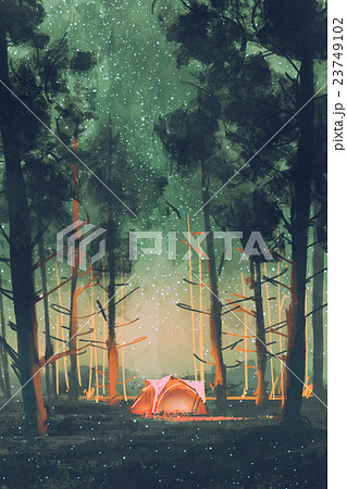 camping in forest at night 23749102