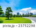 【東京】皇居外苑の松原 23752298
