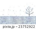 冬の木のイラスト 23752922