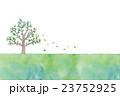木のイラスト 23752925