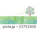 木のイラスト 23752926