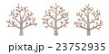 秋の木のイラスト 23752935
