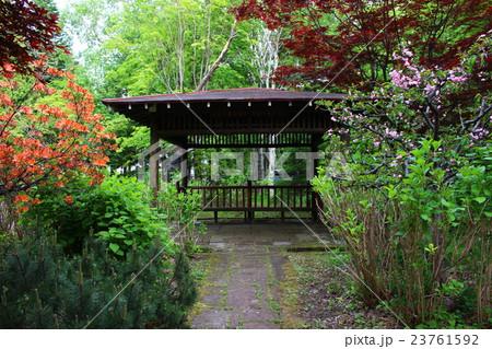 森の中の休憩所 23761592