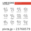 Dog breeds - line design icons set 23768579