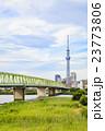 東京スカイツリーと木根川橋 23773806
