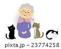 シニア おばあちゃん 孤独 23774258