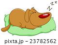 わんこ 犬 ベクトルのイラスト 23782562