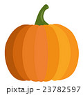 Pumpkin in flat design style isolated on white 23782597