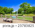 代々木公園 夏 噴水の写真 23783825