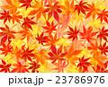紅葉の背景 23786976