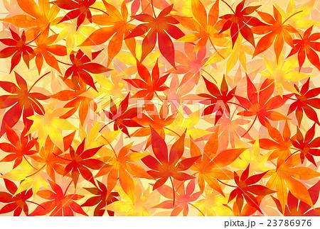 紅葉の背景のイラスト素材 23786976 Pixta