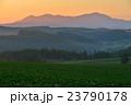 美瑛 北海道 風景の写真 23790178