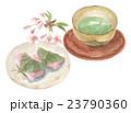 和菓子 桜餅 緑茶のイラスト 23790360