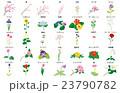 季節の花々2名称 23790782
