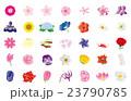 季節の花々3 23790785