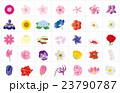 季節の花々3枠 23790787