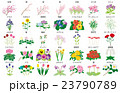 季節の花々名称 23790789