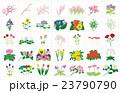 季節の花々枠 23790790