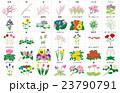 季節の花々枠名称 23790791