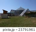 函館熱帯植物園 23791961