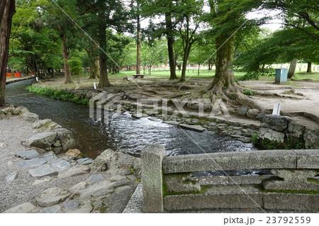 上賀茂神社 神事橋 23792559