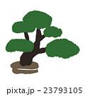 盆栽 23793105