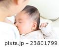赤ちゃん 授乳 飲むの写真 23801799