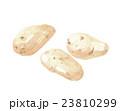 メークイン ジャガイモ 23810299
