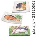 焼き魚 白バック 焼き鰆のイラスト 23810301