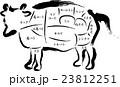牛肉 部位の名称 23812251