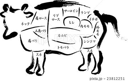牛肉 部位の名称のイラスト素材 23812251 Pixta