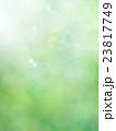 ナチュラル背景 23817749