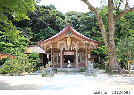 お詣り 神社仏閣 23820092