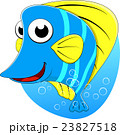 Tropical Butterfly fish 23827518