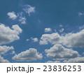 夏の青空と白い雲 23836253