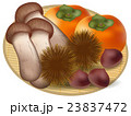 栗 松茸 柿 アイコン  23837472