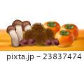 栗 松茸 柿 背景  23837474