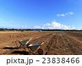 初夏の畑 23838466