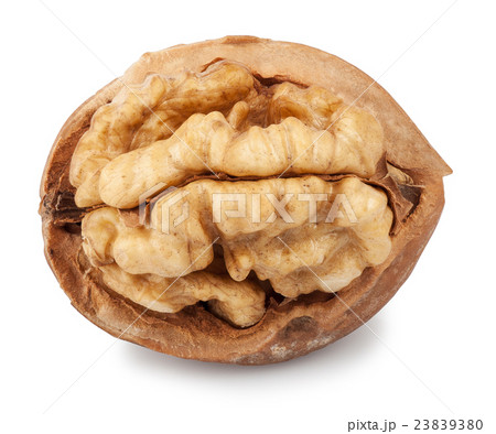 half walnut isolateの写真素材 [23839380] - PIXTA