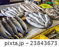 fresh fish in different sizes laying on a table 23843673