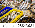 fresh fish in different sizes laying on a table 23843681