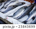 fresh fish in different sizes laying on a table 23843699